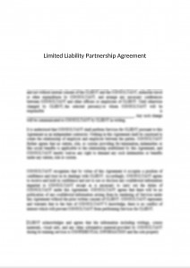Limited Liability Partnership (LLP) Agreement