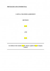 CAPITAL TRANSFER AGREEMENT
