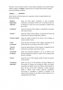 Charter template of sole member limited company in Vietnam (English)