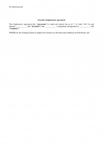 CEO Employment Agreement
